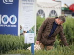 Check out the latest varieties at Cereals LIVE
