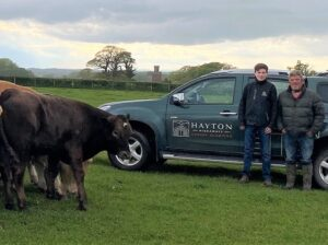 Read more about the article Cumbrian farmer embraces future of cattle trading