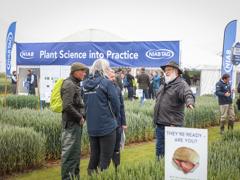 Varieties at the heart of Cereals 2021