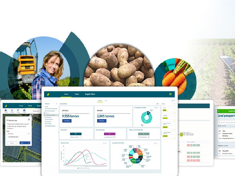 You are currently viewing The future of food production is insight
