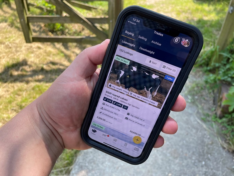 You are currently viewing Breedr trades £1.85m of cattle since February launch
